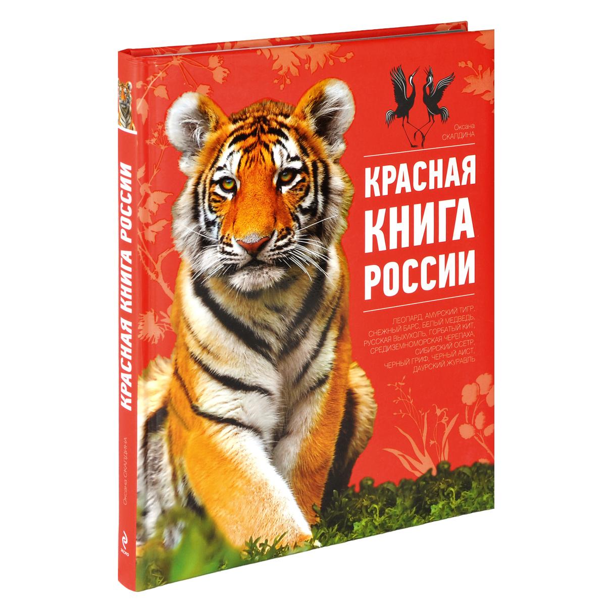 Прикольные картинки красной книги, мартом прикольные смешные
