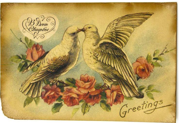 открытки два голубя выступил автором шумных
