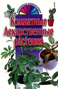 Лекарственные растения домашних условиях