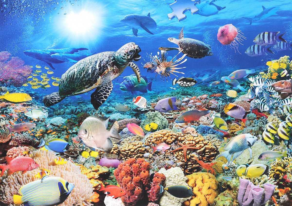 Открытка, картинки подводного мира с надписями